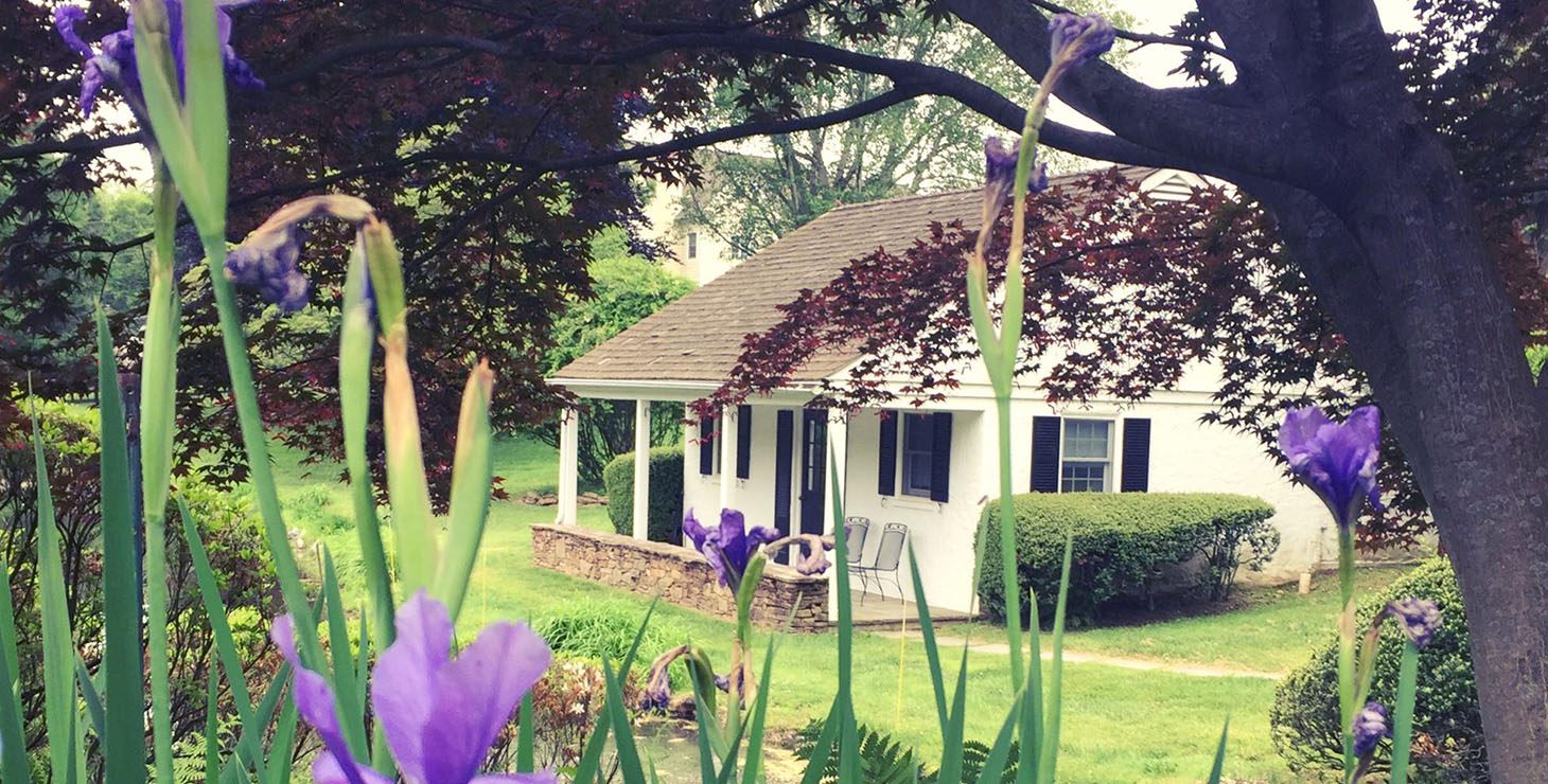 The single-story Pond House seen past blooming purple flowers