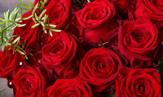 A bouquet of fresh, deep red roses