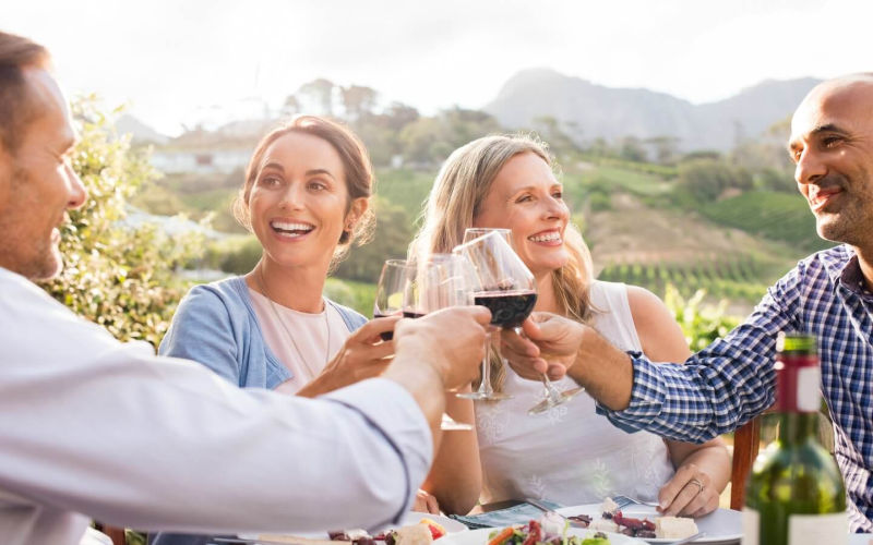 4 people toasting wine with a table of food and a vineyard in the background