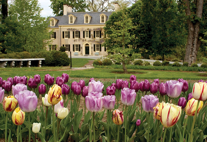 Flower garden outside of the Hagley Mansion