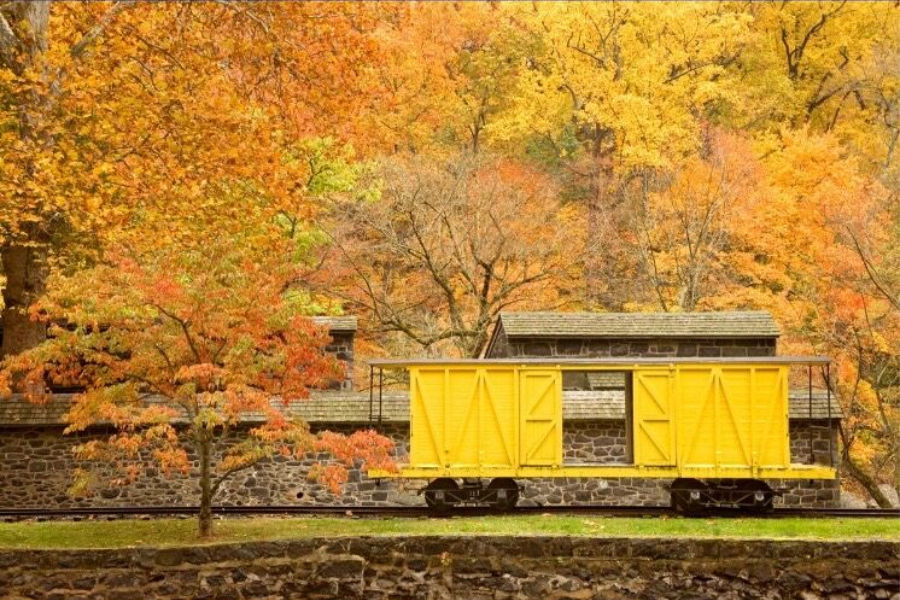 Train Cart in the fall