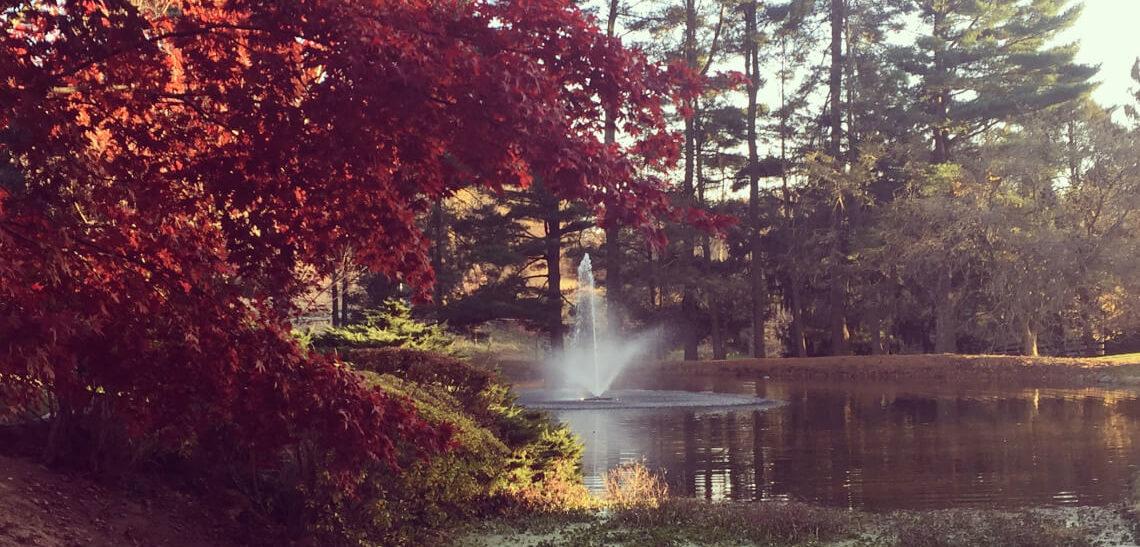 Fountain & Fall Leaves at Inn at Whitewing Farm